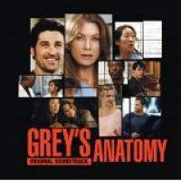 download Soundtrack - Various Artists : The Music Of Grey's Anatomy (cd1)