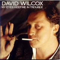 download David Wilcox : My Eyes Keep Me In Trouble