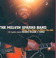 download Melvin Sparks Band : What You Hear Is What You Get