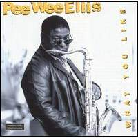 download Pee Wee Ellis : What You Like